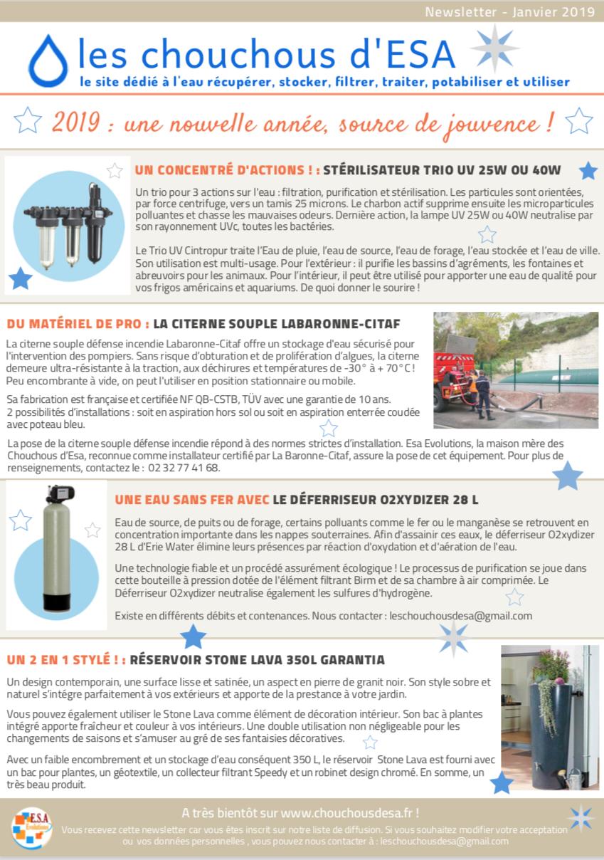 Newsletter Les Chouchous d'Esa - Janvier 2019